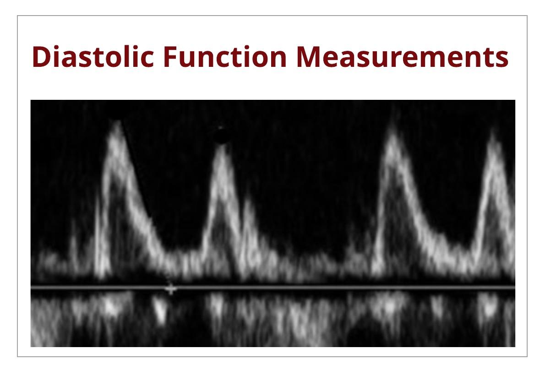 Correct Techniques to Acquire Diastology Measurements