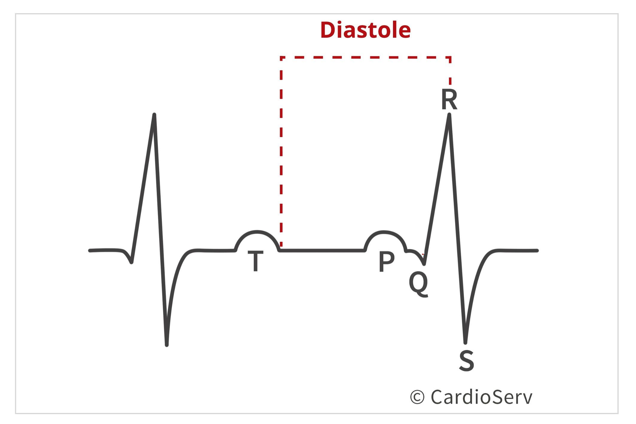 Diastole in Cardiac Cycle