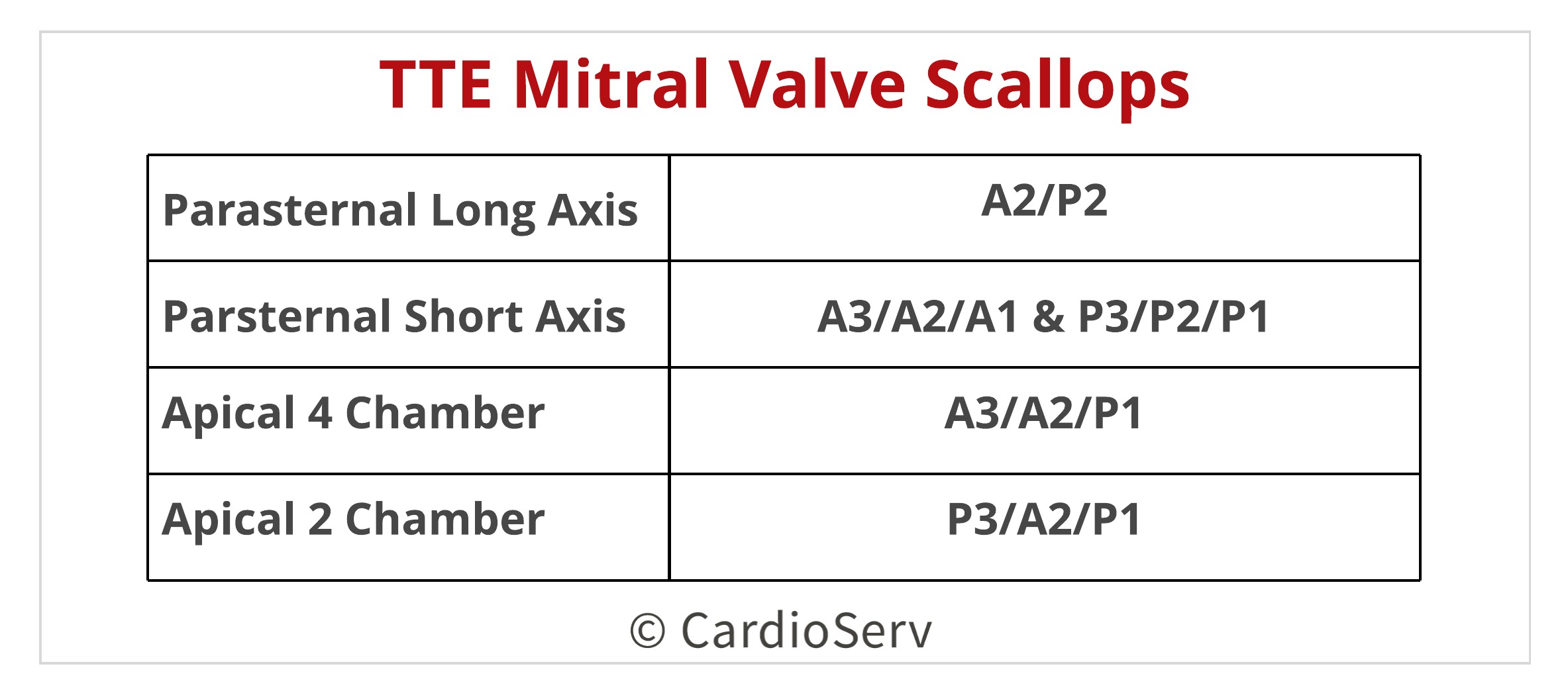 Finally... Mitral Valve Orientation Explained!