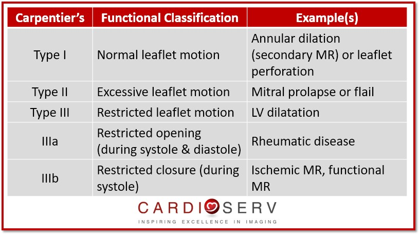 carpentier's functional classification