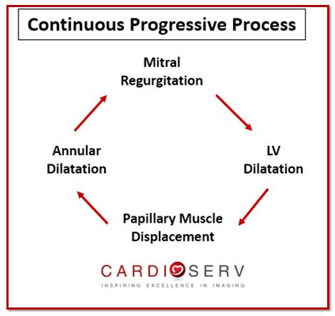 Functional Secondary Mitral Regurgitation Continuous Process Echo