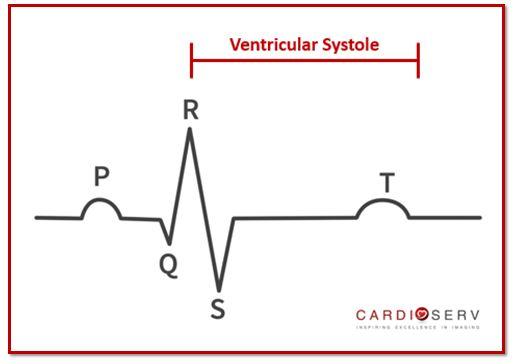 Ventricular Systole EKG