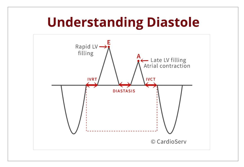 Understanding Diastole