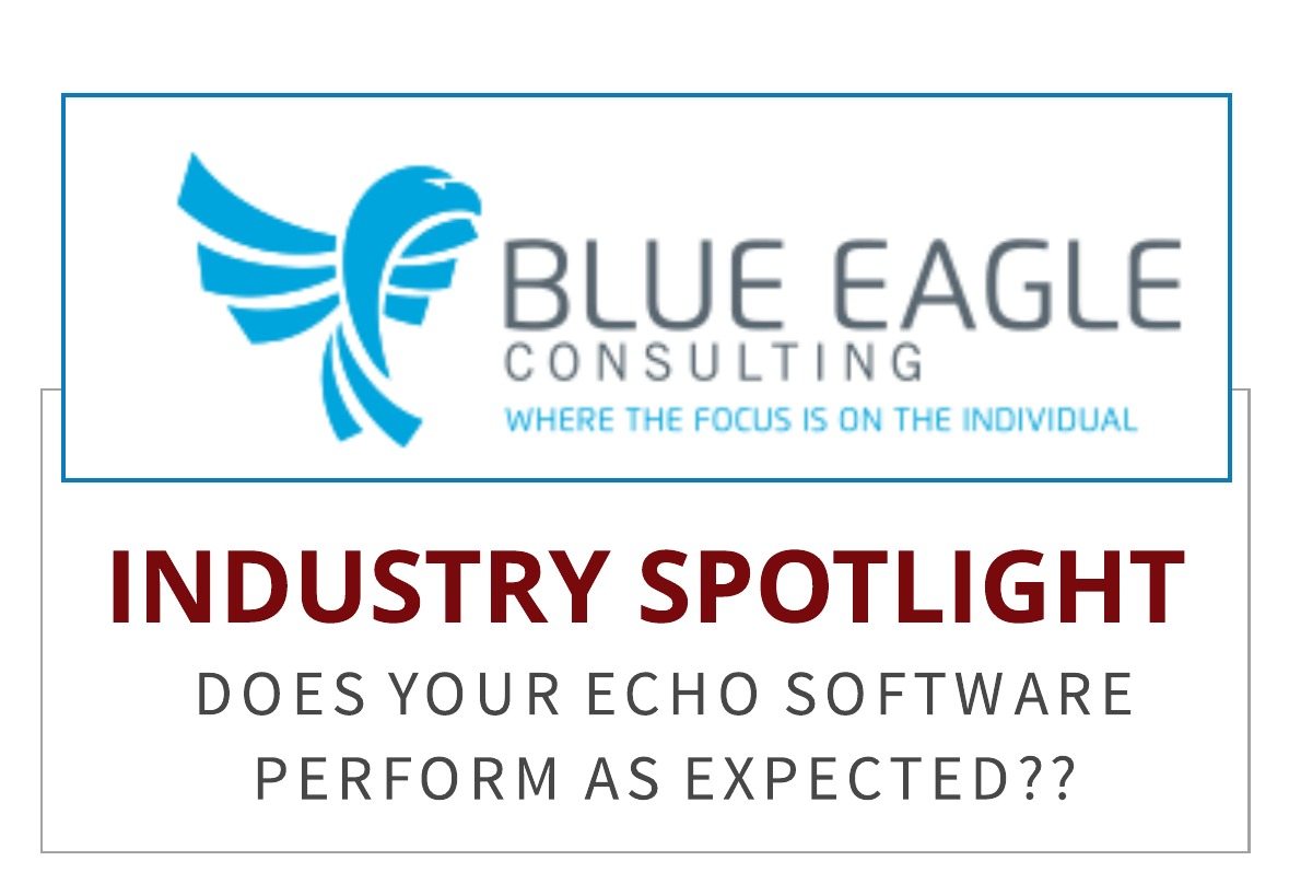 Blue Eagle Consulting:  Finally Help With Your Echo Reporting Software!