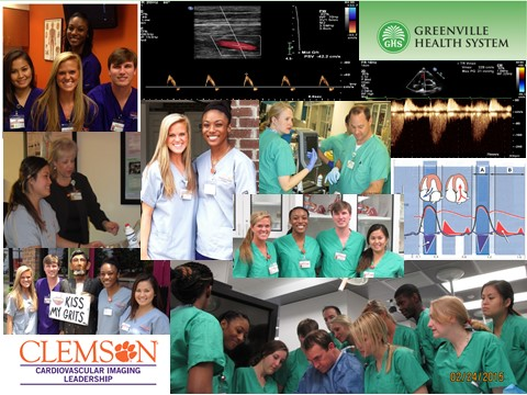 Clemson University and Greensville Health System