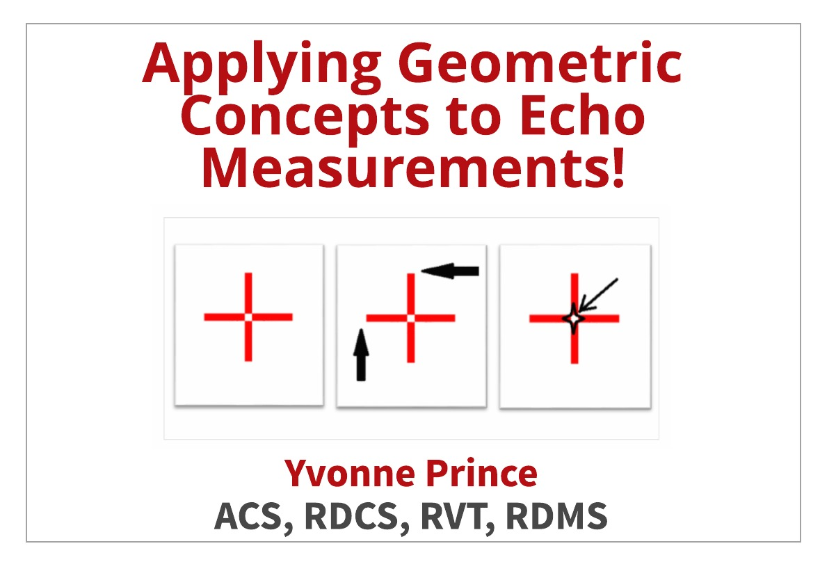 Tips for Accurate Echo Measurements by Applying Geometric Concepts