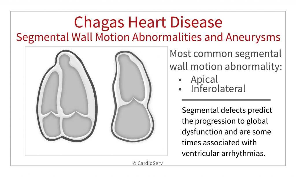 Chagas Disease and echocardiography