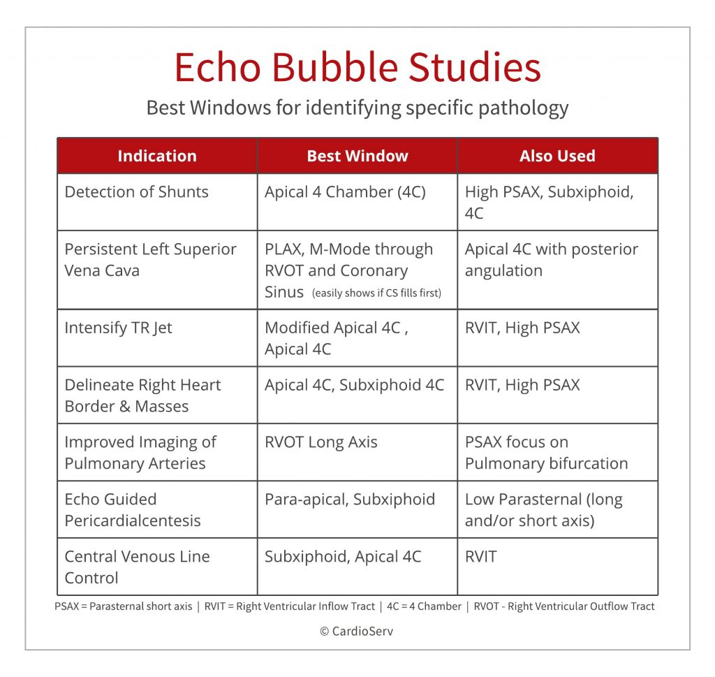 Best views during echo bubble study