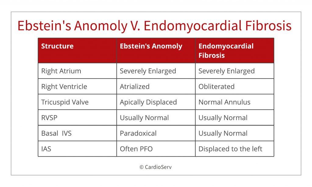 ebstein anomaly v endomyocardial firbrosis