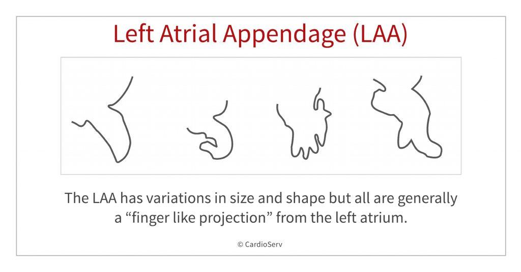 LAA variant shapes
