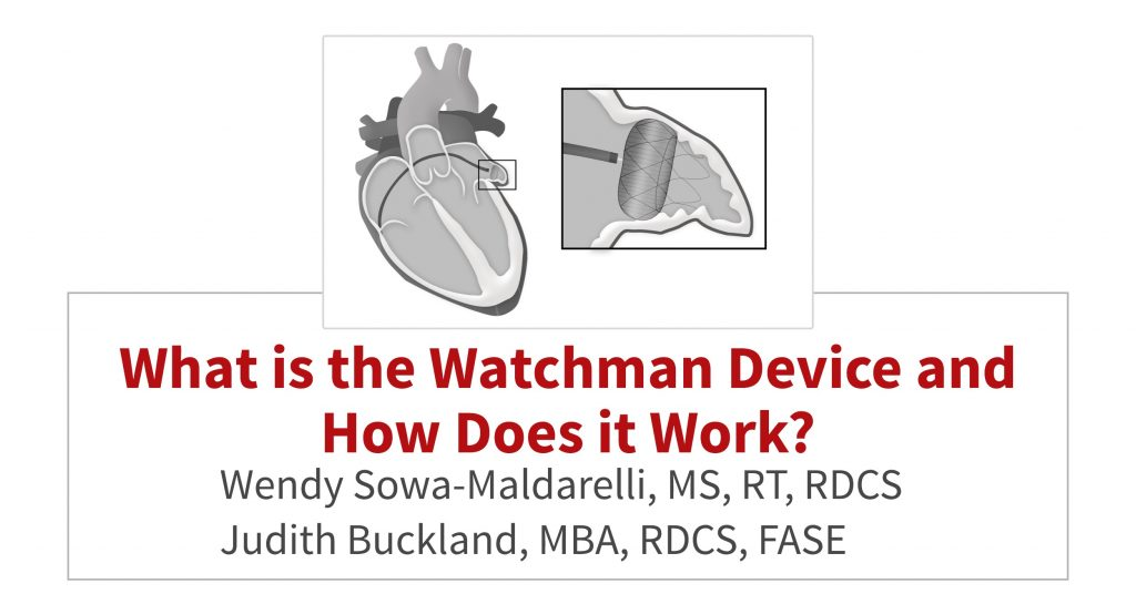 What is the Watchman Device