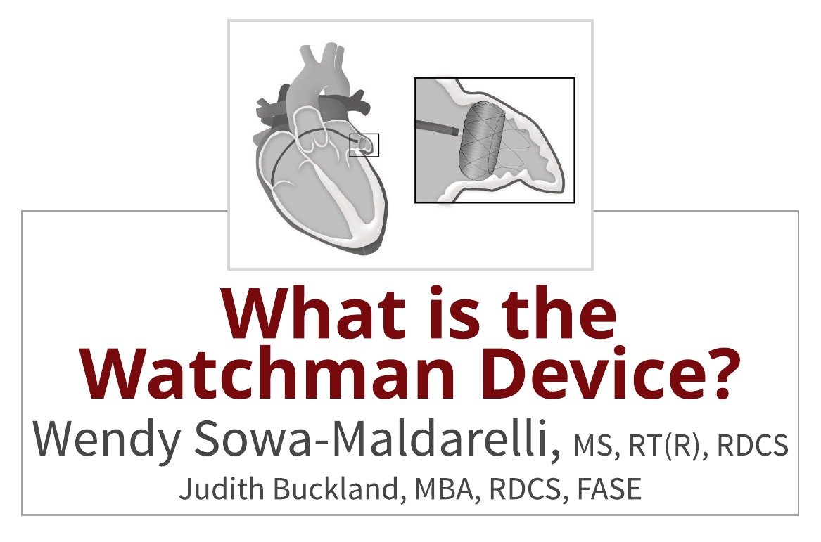 What is the Watchman Device and How Does it Work?