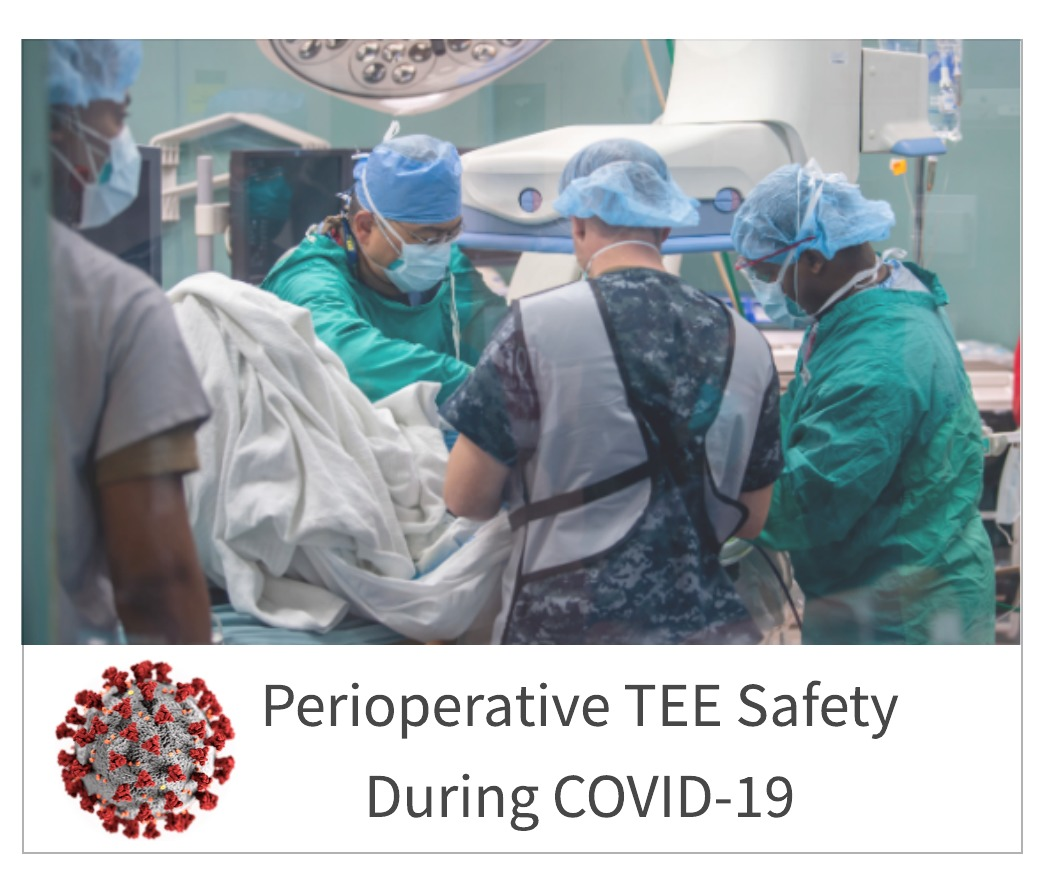 Perioperative TEE Safety During COVID-19
